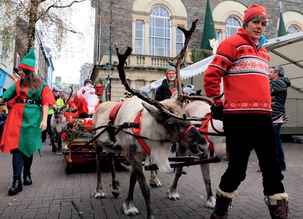 Carmarthen_Reindeer_Jan19